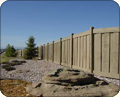 Concrete Fence